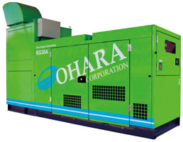 Biogas power generator
